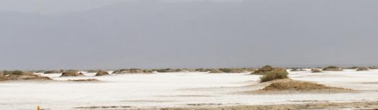 Taklamakan Desert Salt Flats