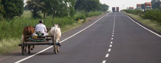 Yep, that's a cow drawn cart on a 4 lane highway.