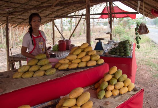 Roadside Mango saleslady